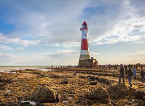 Tours & Sightseeing - Beachy Head Lighthouse